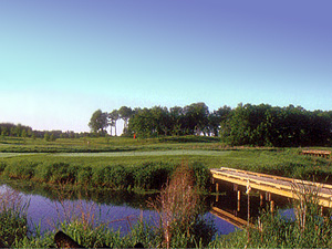 best twin cities golf courses rush creek